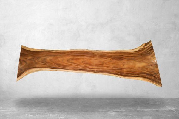 Tischplatte Baumstamm - Outdoor - Länge 358 cm - front view1