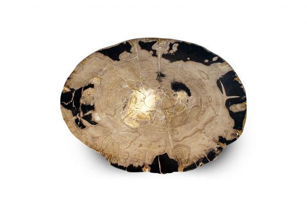 Versteinertes Holz Tisch - Black Sands - Länge 65 cm - front view1