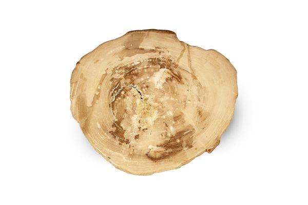Versteinertes Holz Tisch - Chebbi - Länge 46 cm - front view1
