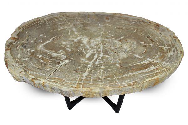 Versteinertes Holz Tisch - Cho Oyu - Länge 107 cm - front view1