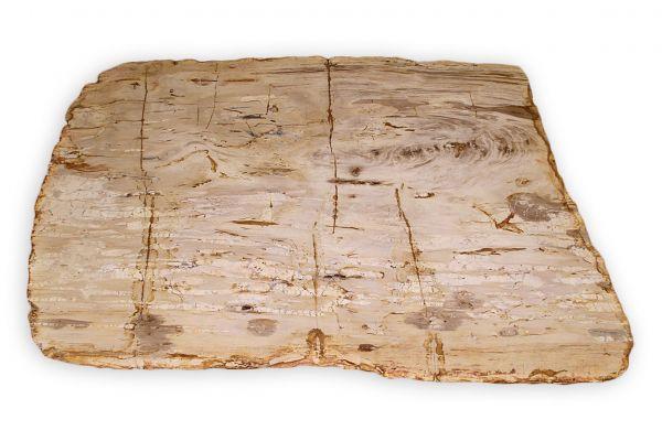 Versteinertes Holz Tischplatte - Sahara - Länge 122 cm - side view1
