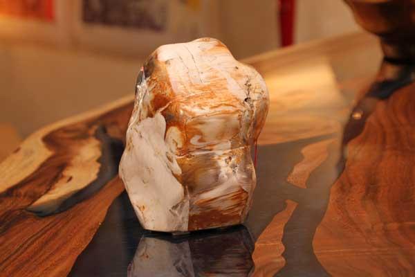 Dekorationen Versteinertes Holz