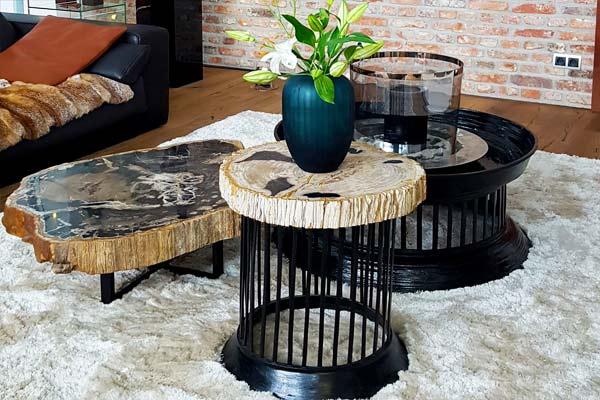 Versteinertes Holz Tischplatten